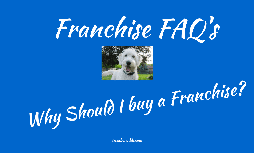 Why buy a franchise?