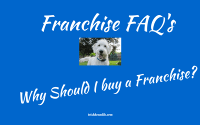 Why should I buy a franchise?