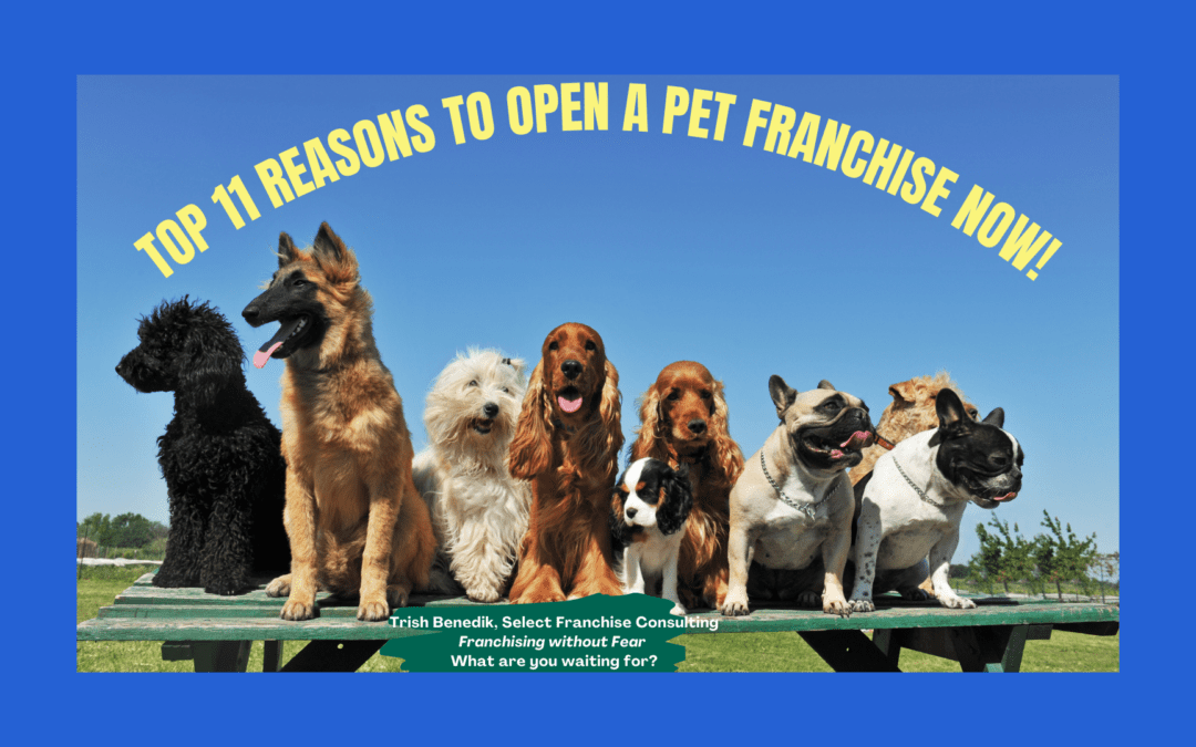 Top 11 Reasons to Own a Pet Franchise NOW