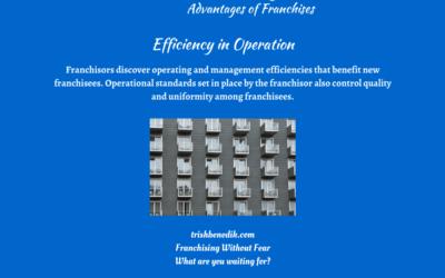Advantages of franchises