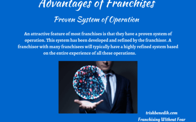 Franchise systems advantages