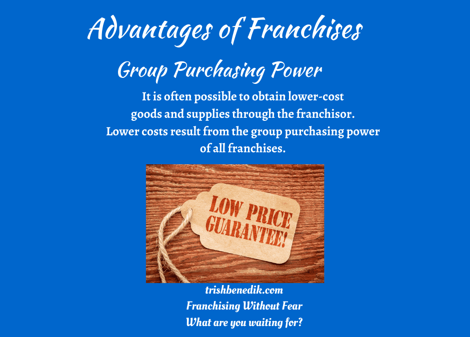 franchise group purchasing power