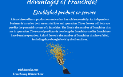 A Franchise offers an Established Product or Service